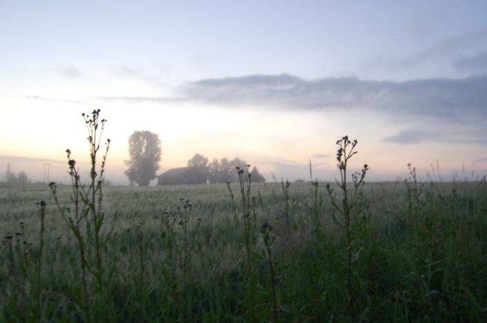 Landlig stillhet